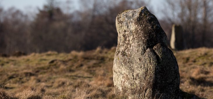 En sten bland många